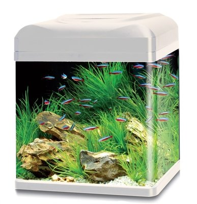 HS AQUA AQUARIUM LAGO 30 LED WIT