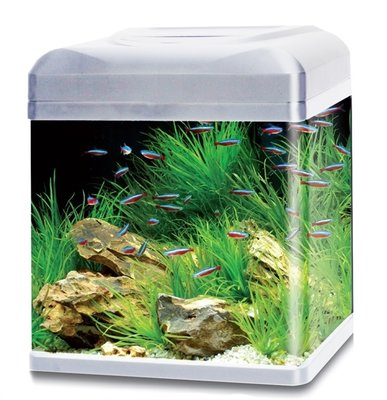 HS AQUA AQUARIUM LAGO 40 LED ZILVER