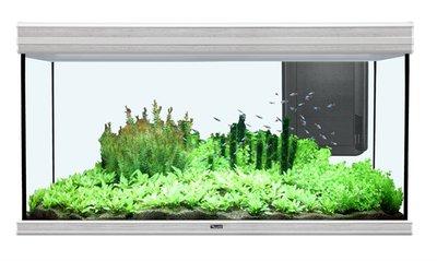 AQUATLANTIS AQUARIUM FUSION 120X50X70 INCL. 2X50 W LED