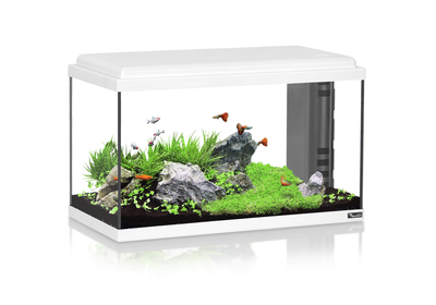 AQUATLANTIS AQUARIUM ADVANCE LED 60+ WIT-025