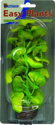 SF EASY PLANTS MIDDEL 20 CM NR. 10 ZIJDE