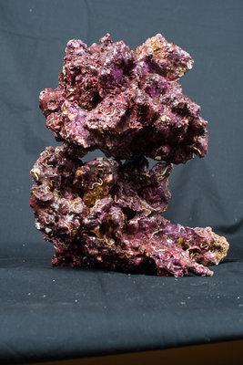 Real Reef Rock - doos 25-28kg - mix S/M/L
