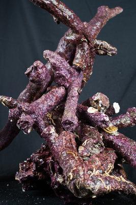 Real Reef Rock - branched box - doos 17kg