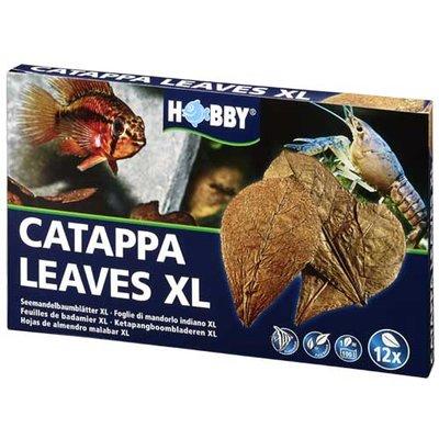 HOBBY Catappa leaves XL 12 stuks
