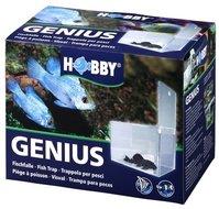 HOBBY GENIUS VISVAL 21X13X15 CM
